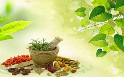 Indian herbs and their magical benefits