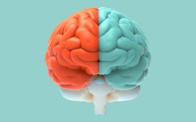 Left vs_ Right Brain