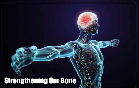 استحکام استخوان های ما